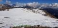 Cime de Voya, Col des champs, Terre sd'émotions, Randonnée dans le 06, Entraunes, Val Pelens
