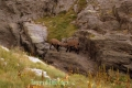 Lac de l'agnel, Terres d'émotions, Casterino, Bouquetins, Parc du Mercantour, Randonnée dans le 06