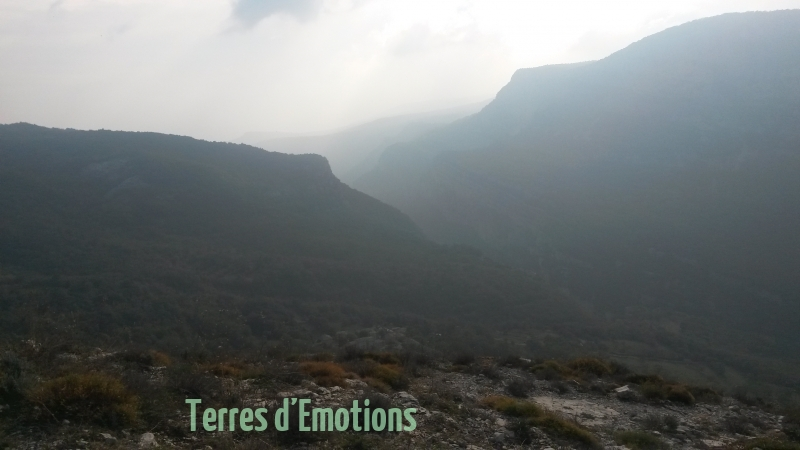 Courmes, Brame du Cerf, Plateau Calcaire, Vallée du loup, Terres d'émotions, Randonnée dans le 06, St Barnabé