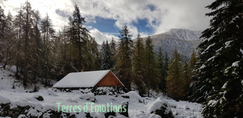 Premières neiges, couleurs d\'automne,  Vallons des Erps, Cerise, Terres d\'émotions, Randonnée dans le 06