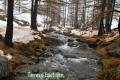 Vallon de la Braisse, Tinée, Terre s d\'émotions, Randonnées dans le 06. Raquettes à neige