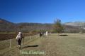 Montagne de Thiey -Canaux, Terres d'émotions, Randonnée dans le 06