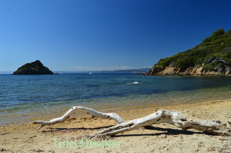 Escapade Port Cros, Terres d''émotions, randonnée dans le 83, Parc National Port Cros