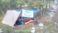 Bivouac, brame du cerf, Forêt Garavagne, Rut du cerf, Terres d'émotions, randonnée dans le 06