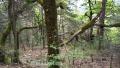 Barre de Rancoumas, Trigance, Gorges du Verdon, Terres d'émotions, Randonnée dans le 83