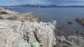 Pointe de St Tropez, Pointe de la Rabiou, Plage de Tahiti, pampelonne, Sentier du littoral, Terres d'émotions, Randonnée dans le 83