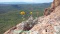 Perthus Occidental, Esterel, Col de belle barbe, Terres d'émotions, Randonnée dans le 06