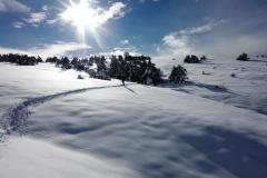 Terres d\'émotions, randonnée dans le 06, Plateau de Caussols, Haut Montet, Gourdon