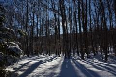 Montagne de Thiey, Terres d'émotions, randonnée dans le 06, Canaux, Neige, Raquettes